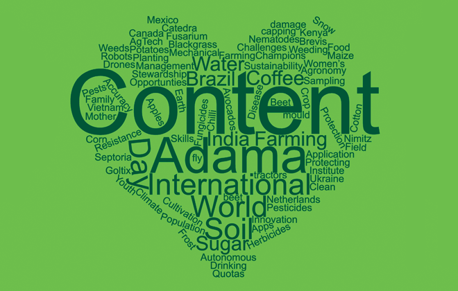 Content Creation - Adama Global